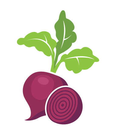 vector whole beet root with leaves and half of beet symbols isolated on white background. icon of beetroot vegetable for healthy vegetarian food illustrations