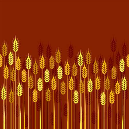 Seamless repeating wheat, barley or rye Illustration