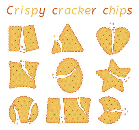 vector set of baked cracker chips with wavy edges. top view of cheese crackers of different shapes: round,  rectangle, ellipse, square, triangle, hear and star. broken and bitten cookies Ilustração