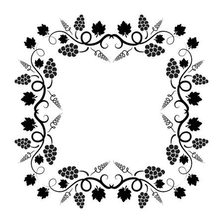 vector square shape background decoration of grape vine with copyspace. black grapevine illustration with grape clusters, leaves and  tendrils isolated on white background