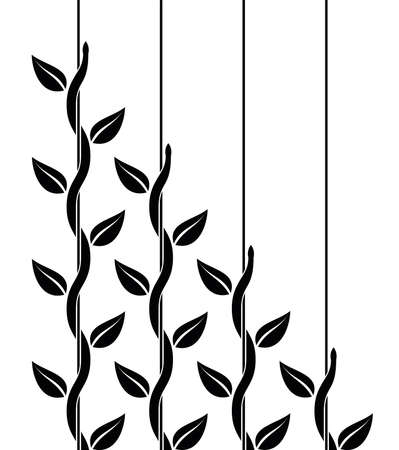 vector leadership or competition concept with climbing plants with leaves where leader is stronger than followers. climber ivy plant isolated on white background. set of decorative climbing plants