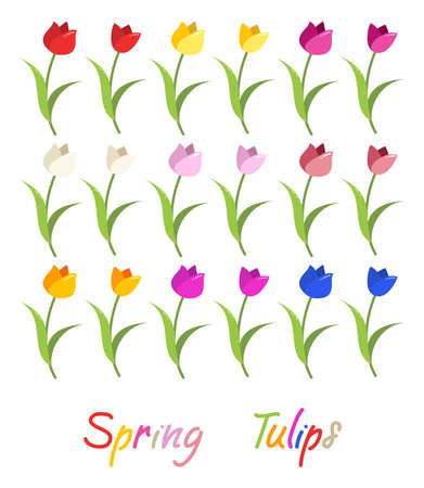 Vector set of colorful tulip graphic isolated on white