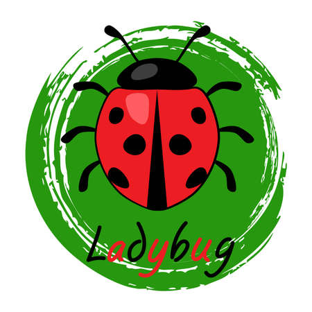 vector icon of red ladybird on a green brush stroke circle. ladybug insect and ladybug text on green circle as leaf symbol isolated on white background