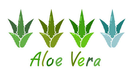 vector set of aloe vera plant icons isolated on white background. nature medicine herbal health care symbol. aloe vera text