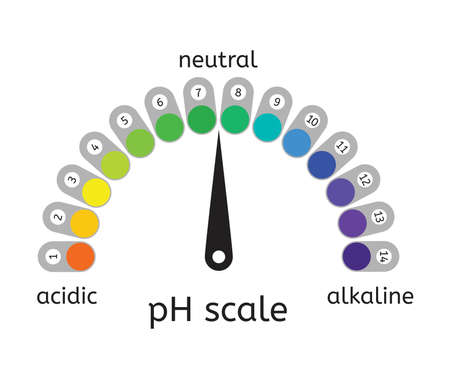 vector ph scale of acidic,neutral and alkaline value chart for acid and alkaline solutions. ph scale measurement illustration
