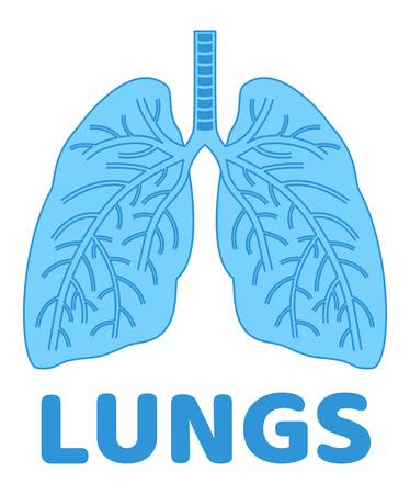 vector human lungs flat icon isolated on white background. blue color lung organ anatomy symbol for health and medical illustrations