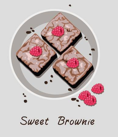 vector chocolate brownies in a plate isolated on gray background. brownie cake pieces with raspberry fruits on top. sweet brownies on plate as homemade dessert food illustration and sweet brownie text