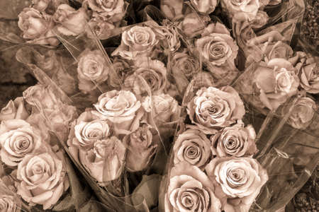 Bunches of roses for sale in Paris Stock Photo - 23243827