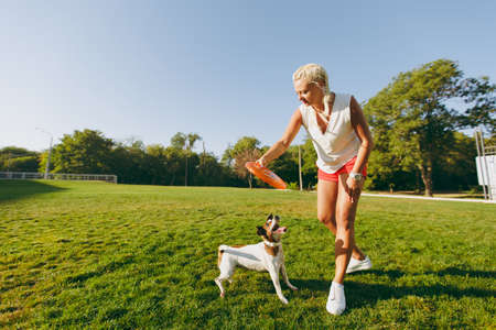 Woman throwing orange flying disk to small funny dog, which catching it on the grass. Little Jack Russel Terrier pet playing outdoors in park. Dog and owner on open air. Animal in motion background