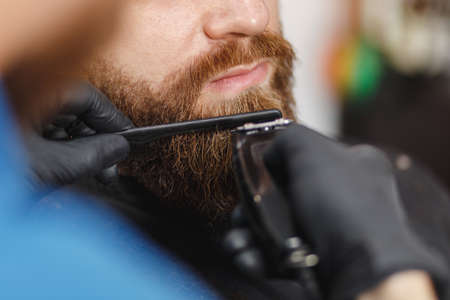 Close up of male professional hairdresser serving client with thick big beard by clipper. Ginger handsome brutal stylish young man getting trendy haircut in black cape. Light white barber shop room