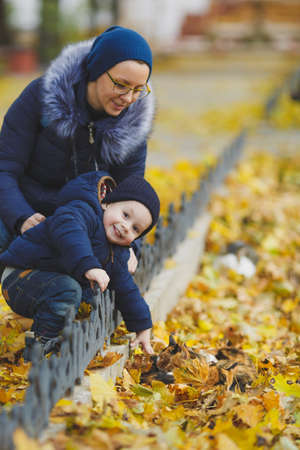 Woman walking in yellow fall park with little cute child baby boy on nature. Mother, small kid son stroke caress tricolor street cats. Parenthood, family day 15 of may, love, parents children concept
