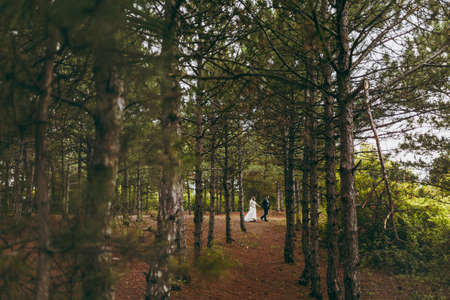 Beautiful wedding photosession. Handsome groom in blue formal suit and bow tie with boutonniere and his elegant bride in white dress and veil with a beautiful hairdress on a walk in coniferous forest.