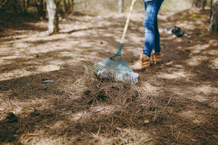Cropped Young woman in casual clothes cleaning rubbish using rake for garbage collection in littered park. Problem of environmental pollution. Stop nature garbage, environment protection concept Stockfoto