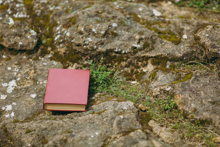 Close up of red book on old gray stones overgrown with green and brown moss and grass in park or forest. Natural background, textures. Copy space advertisement. With place for text. Advertising area Stock Photo