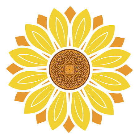 Sunflower vector illustration, sunflower isolated on white background