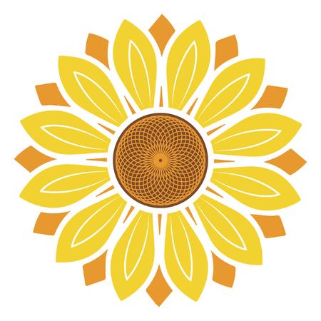 Sunflower vector illustration, sunflower isolated on white background Standard-Bild - 122617124