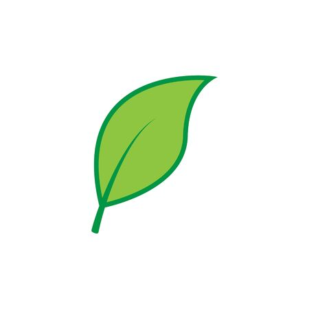 Green leaf icon. Vector illustration isolated on white background.