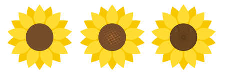 Sunflower in flat style vector isolated