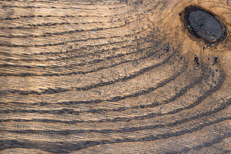 Pickled oak Board with a knot. Beautiful structure of a tree cut close-up Foto de archivo
