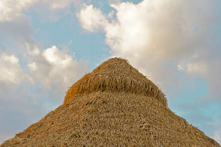 Top of a straw hut in Costa Rica surrounded by a beautiful evening sky.