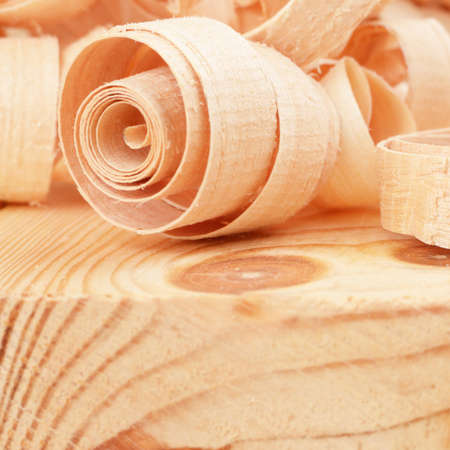 shavings: Fresh shaving on the natural pine plank Stock Photo