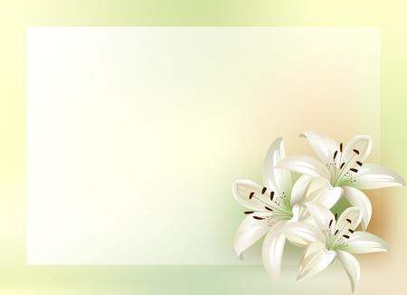 flor de lis: ramo de lirios con lugar para el texto