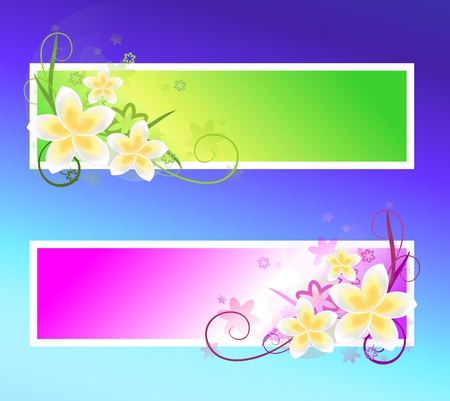 spring banners photo