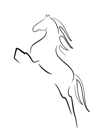 racehorse: horse