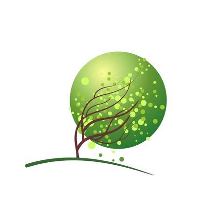 green spring tree Stock Photo