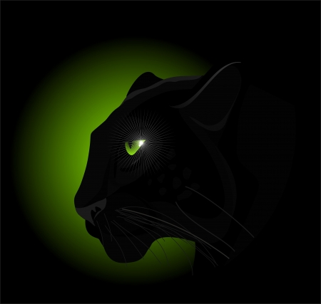green and black: panther