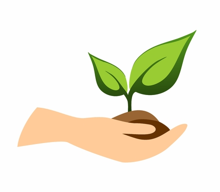 hand with green plant vector illustration