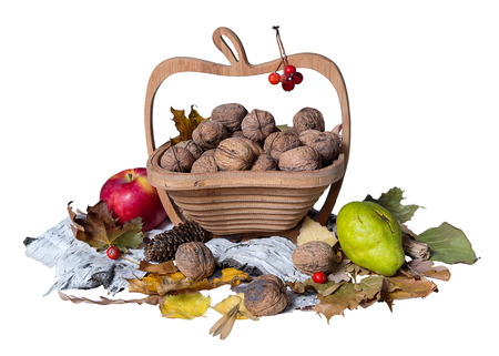 Autumn theme. Basket with nuts on white background photo