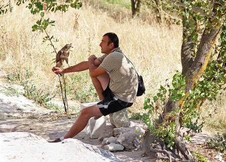 tame: Ukraine, Bakhchisaray - September 06, 2011: Man and tame bird of prey on the trail in Calais