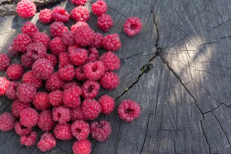 truncated: Ripe raspberries on a cracked stump
