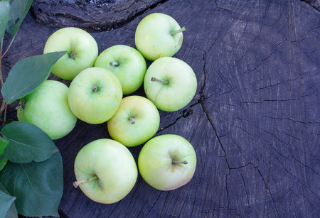 truncated: Green apples on a cracked stump Stock Photo