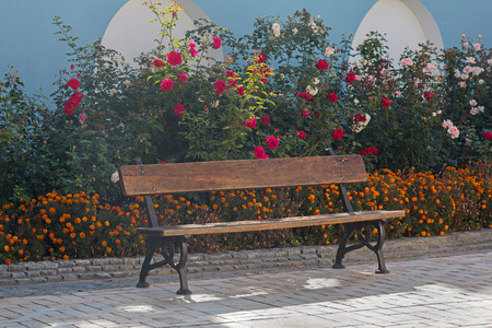 ideally: Beautiful bench in the park. Flower bed
