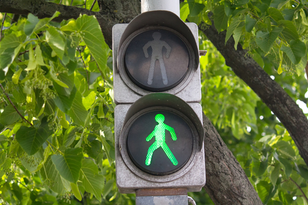 stop and go light: Green traffic signal hanging on wood background. Transport