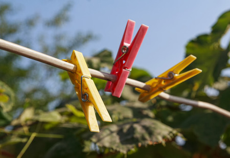 Colorful clothespins on a clothesline in the garden. Objects