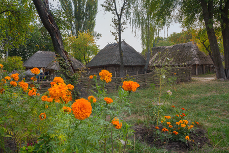 pirogovo: Old houses of peasants and flowers in the foreground in museum of Pirogovo . Ukraine Stock Photo