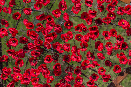 Pano made of artificial red poppies scenery stock photo picture pano made of artificial red poppies scenery stock photo 66544041 mightylinksfo