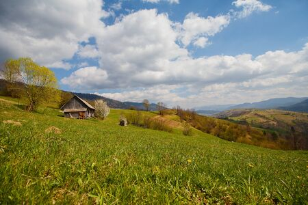 Farm and mountain panorama in early spring. Carpathians