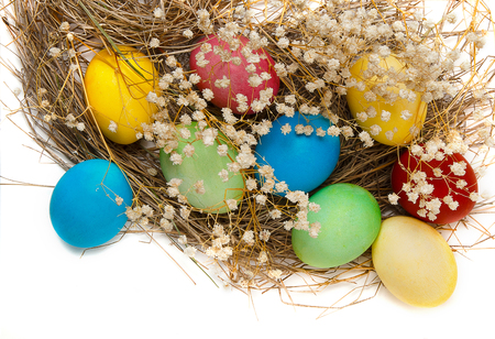 Colorful Easter eggs and a nest isolated on white background