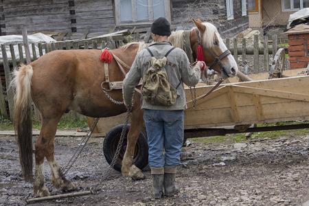 Synevyrska Polyana, Ukraine - April 21, 2016: Farmer put the horse near the house Editorial