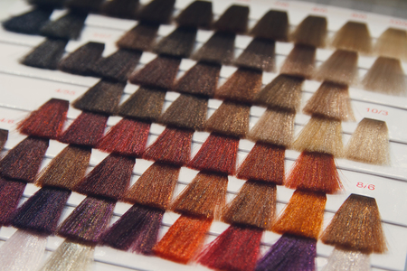 Palette of various patterns of colored hair