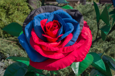 Artificial flower in the colors of the flag of the self-proclaimed Donetsk Peoples Republic. Donetsk