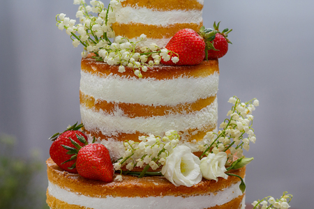 Beautiful biscuit cake with strawberry closeup. Food