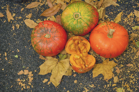 Orange and green pumpkins get with autumn leaves on a black background. Halloween Stock Photo