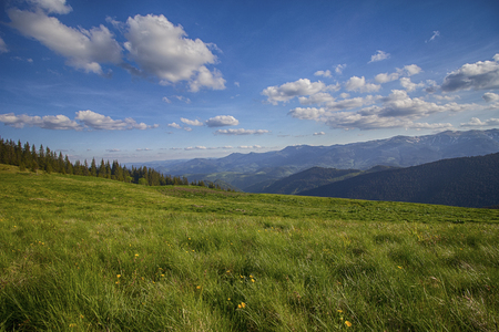 Paisaje panorámico de verano de montaña con cielo azul y nubes. montes de Cárpatos Foto de archivo