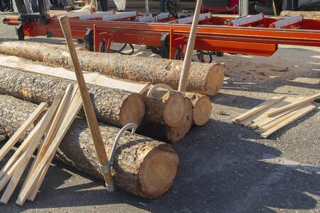 Logs and machine for sawing logs at the sawmill. Industry Stockfoto