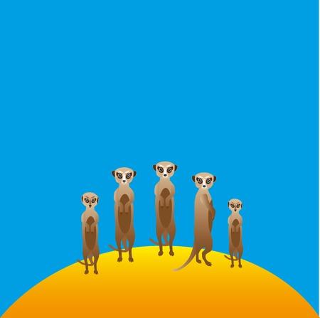 Vector pack of meerkats in the meadow Illustration